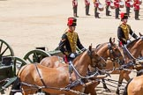 The Colonel's Review 2015. Horse Guards Parade, Westminster, London,  United Kingdom, on 06 June 2015 at 11:52, image #484