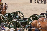 The Colonel's Review 2015. Horse Guards Parade, Westminster, London,  United Kingdom, on 06 June 2015 at 11:52, image #485