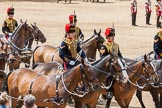 The Colonel's Review 2015. Horse Guards Parade, Westminster, London,  United Kingdom, on 06 June 2015 at 11:52, image #486