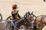 The Colonel's Review 2015. Horse Guards Parade, Westminster, London,  United Kingdom, on 06 June 2015 at 11:53, image #487