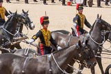 The Colonel's Review 2015. Horse Guards Parade, Westminster, London,  United Kingdom, on 06 June 2015 at 11:53, image #491