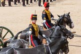 The Colonel's Review 2015. Horse Guards Parade, Westminster, London,  United Kingdom, on 06 June 2015 at 11:53, image #492