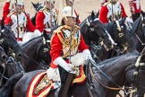The Colonel's Review 2015. Horse Guards Parade, Westminster, London,  United Kingdom, on 06 June 2015 at 11:54, image #501