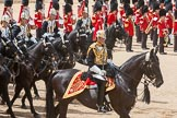 The Colonel's Review 2015. Horse Guards Parade, Westminster, London,  United Kingdom, on 06 June 2015 at 11:54, image #505