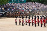 The Colonel's Review 2015. Horse Guards Parade, Westminster, London,  United Kingdom, on 06 June 2015 at 11:56, image #515