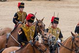 The Colonel's Review 2015. Horse Guards Parade, Westminster, London,  United Kingdom, on 06 June 2015 at 11:56, image #518