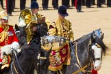 The Colonel's Review 2015. Horse Guards Parade, Westminster, London,  United Kingdom, on 06 June 2015 at 11:58, image #539