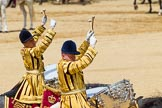 The Colonel's Review 2015. Horse Guards Parade, Westminster, London,  United Kingdom, on 06 June 2015 at 11:58, image #550