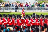 The Colonel's Review 2015. Horse Guards Parade, Westminster, London,  United Kingdom, on 06 June 2015 at 11:59, image #555