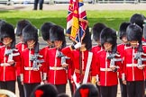 The Colonel's Review 2015. Horse Guards Parade, Westminster, London,  United Kingdom, on 06 June 2015 at 11:59, image #556