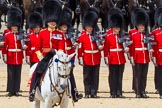 The Colonel's Review 2015. Horse Guards Parade, Westminster, London,  United Kingdom, on 06 June 2015 at 12:00, image #558