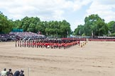 The Colonel's Review 2015. Horse Guards Parade, Westminster, London,  United Kingdom, on 06 June 2015 at 12:01, image #559