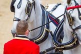 The Colonel's Review 2015. Horse Guards Parade, Westminster, London,  United Kingdom, on 06 June 2015 at 12:06, image #576