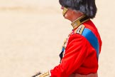 The Colonel's Review 2015. Horse Guards Parade, Westminster, London,  United Kingdom, on 06 June 2015 at 12:07, image #578