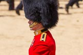 The Colonel's Review 2015. Horse Guards Parade, Westminster, London,  United Kingdom, on 06 June 2015 at 12:07, image #579