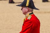 The Colonel's Review 2015. Horse Guards Parade, Westminster, London,  United Kingdom, on 06 June 2015 at 12:07, image #580