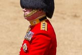 The Colonel's Review 2015. Horse Guards Parade, Westminster, London,  United Kingdom, on 06 June 2015 at 12:07, image #581