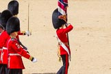 The Colonel's Review 2015. Horse Guards Parade, Westminster, London,  United Kingdom, on 06 June 2015 at 12:08, image #586