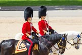 The Colonel's Review 2015. Horse Guards Parade, Westminster, London,  United Kingdom, on 06 June 2015 at 12:09, image #590