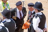 The Colonel's Review 2015. Horse Guards Parade, Westminster, London,  United Kingdom, on 06 June 2015 at 12:11, image #595