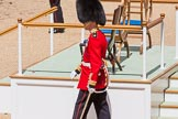 The Colonel's Review 2015. Horse Guards Parade, Westminster, London,  United Kingdom, on 06 June 2015 at 12:13, image #596