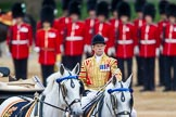Trooping the Colour 2015. Horse Guards Parade, Westminster, London,  United Kingdom, on 13 June 2015 at 11:05, image #297