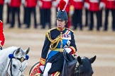 Trooping the Colour 2015. Horse Guards Parade, Westminster, London,  United Kingdom, on 13 June 2015 at 11:05, image #304