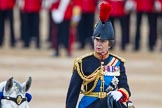 Trooping the Colour 2015. Horse Guards Parade, Westminster, London,  United Kingdom, on 13 June 2015 at 11:05, image #306