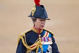 Trooping the Colour 2015. Horse Guards Parade, Westminster, London,  United Kingdom, on 13 June 2015 at 11:05, image #313