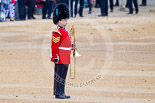 Trooping the Colour 2015. Image #43, 13 June 2015 10:13 Horse Guards Parade, London, UK