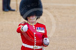 Trooping the Colour 2015. Image #70, 13 June 2015 10:21 Horse Guards Parade, London, UK