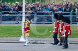 Trooping the Colour 2015. Image #86, 13 June 2015 10:25 Horse Guards Parade, London, UK