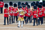Trooping the Colour 2015. Image #89, 13 June 2015 10:26 Horse Guards Parade, London, UK