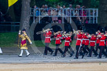 Trooping the Colour 2015. Image #94, 13 June 2015 10:27 Horse Guards Parade, London, UK