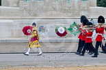 Trooping the Colour 2015. Image #98, 13 June 2015 10:28 Horse Guards Parade, London, UK