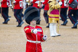 Trooping the Colour 2015. Image #122, 13 June 2015 10:32 Horse Guards Parade, London, UK