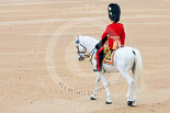 Trooping the Colour 2015. Image #134, 13 June 2015 10:35 Horse Guards Parade, London, UK