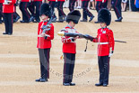 Trooping the Colour 2015. Image #135, 13 June 2015 10:36 Horse Guards Parade, London, UK