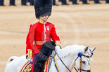 Trooping the Colour 2015. Image #150, 13 June 2015 10:39 Horse Guards Parade, London, UK
