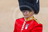 Trooping the Colour 2015. Image #153, 13 June 2015 10:40 Horse Guards Parade, London, UK