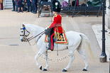 Trooping the Colour 2015. Image #156, 13 June 2015 10:41 Horse Guards Parade, London, UK