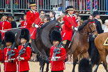 Trooping the Colour 2015. Image #244, 13 June 2015 10:59 Horse Guards Parade, London, UK