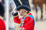 Trooping the Colour 2015. Image #255, 13 June 2015 11:00 Horse Guards Parade, London, UK
