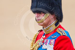 Trooping the Colour 2015. Image #264, 13 June 2015 11:00 Horse Guards Parade, London, UK