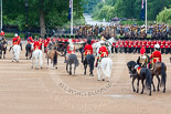 Trooping the Colour 2015. Image #275, 13 June 2015 11:01 Horse Guards Parade, London, UK