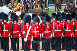 Trooping the Colour 2015. Image #287, 13 June 2015 11:04 Horse Guards Parade, London, UK