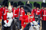 Trooping the Colour 2015. Image #290, 13 June 2015 11:04 Horse Guards Parade, London, UK