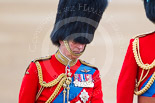 Trooping the Colour 2015. Image #310, 13 June 2015 11:05 Horse Guards Parade, London, UK