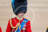 Trooping the Colour 2015. Image #311, 13 June 2015 11:05 Horse Guards Parade, London, UK