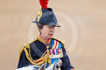 Trooping the Colour 2015. Image #312, 13 June 2015 11:05 Horse Guards Parade, London, UK